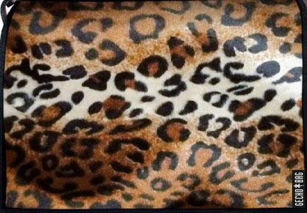 335 Leopard