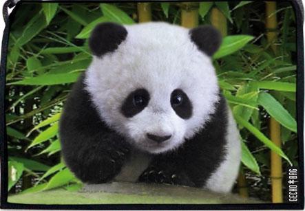 307 Panda Wechselklappe Umhängetasche