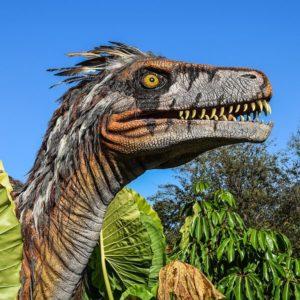 Lasche 2047 Wechselklappe Dino
